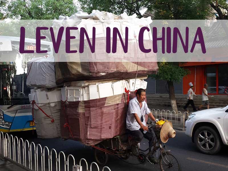 GoYvon China