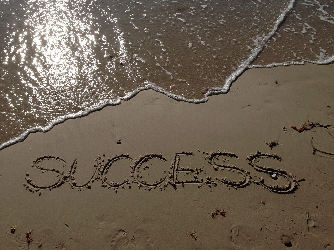 succes - anne neijnens