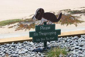 geldproblemen en hondenpoep